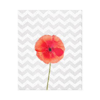 Single red poppy on grey and white chevron pattern canvas print