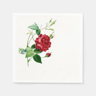 Single Red Redoute Rose Paper Napkins