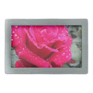Single red rose flower with water droplets belt buckle