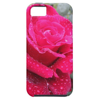 Single red rose flower with water droplets case for the iPhone 5