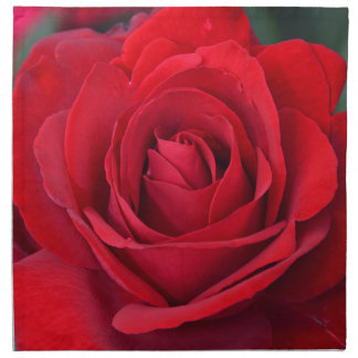 Single red rose in full bloom printed napkin