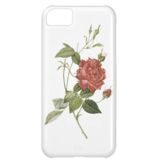 Single Red Rose Iphone 5S Case iPhone 5C Cover