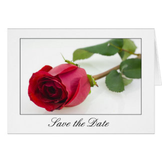 Single Red Rose, Save the Date Note Cards