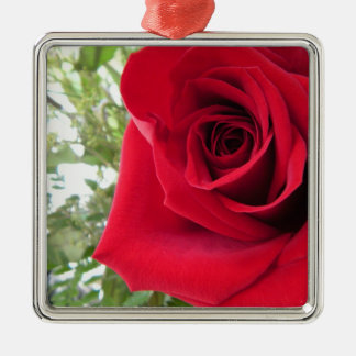 Single Red Rose Silver-Colored Square Decoration