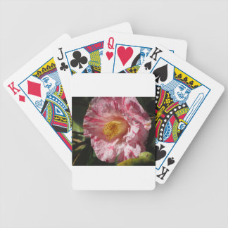 Single red streaked white flower of Camellia Bicycle Playing Cards