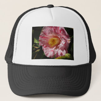 Single red streaked white flower of Camellia Trucker Hat