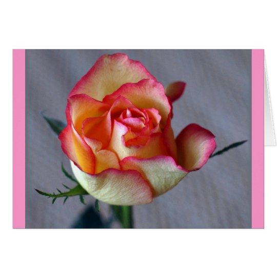 """Single Rose"" (Blank) Card"