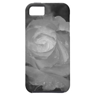 Single rose flower with water droplets in spring case for the iPhone 5