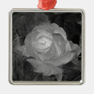 Single rose flower with water droplets in spring metal ornament