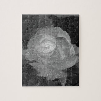 Single rose flower with water droplets in spring puzzle
