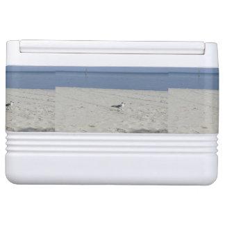 Single Seagull Cooler