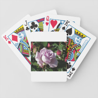 Single violet rose flower with red roses around bicycle playing cards