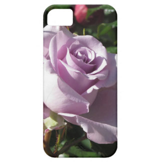 Single violet rose flower with red roses around iPhone 5 cover
