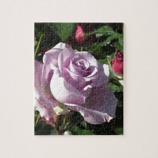 Single violet rose flower with red roses around jigsaw puzzle