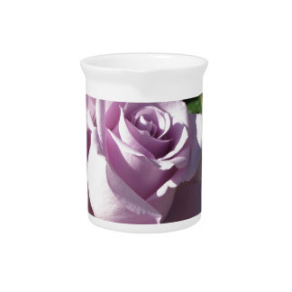 Single violet rose flower with red roses around pitcher