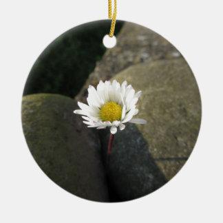 Single white daisy flower between the stones round ceramic decoration