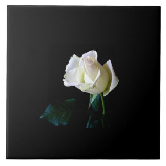 Single White Rose Ceramic Tile