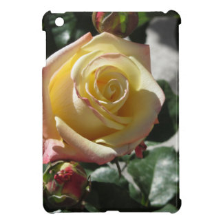 Single yellow rose flower in spring cover for the iPad mini