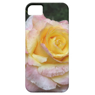 Single yellow rose flower with water droplets barely there iPhone 5 case