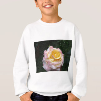 Single yellow rose flower with water droplets sweatshirt