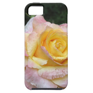 Single yellow rose flower with water droplets tough iPhone 5 case