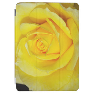 Single yellow rose iPad air cover