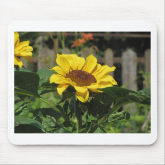 Single yellow sunflower with green leaves mouse pad