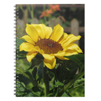 Single yellow sunflower with green leaves notebook