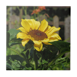 Single yellow sunflower with green leaves tile