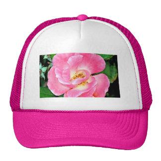 Singular Beauty Lush Pink Rose Cap