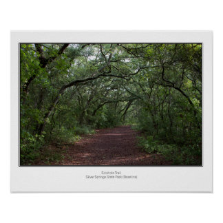 Sinkhole Trail Poster