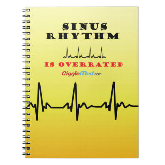 Sinus Rhythm is Overrated Notebooks