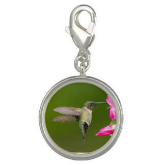 Sipping Hummingbird - Round Charm, Silver Plated
