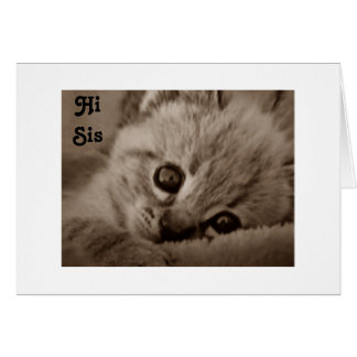 SIS ADORABLE KITTEN SAYS HAPPY BIRTHDAY NOTE CARD