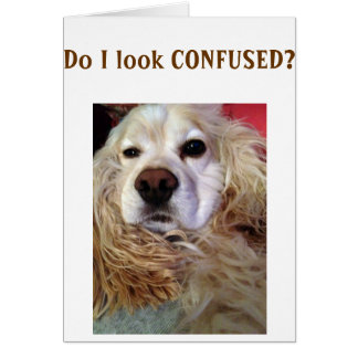 SIS I AM SO CONFUSED U LOOK GREAT BIRTHDAY CARD