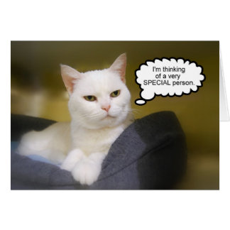 Sister White Cat Birthday Humor Card