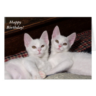 Sisterly Love Twins Cat Birthday Card