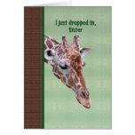Sister's Birthday Card with Giraffe