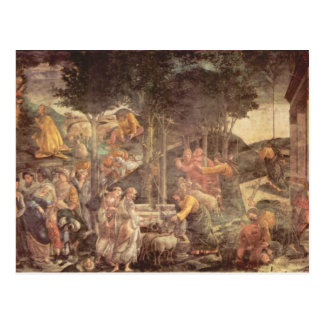 Sistine Chapel -The youth of Moses Postcard
