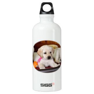 Sit Up Labrador Water Bottle