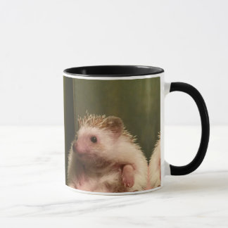 Sitting Hedgehog Mug