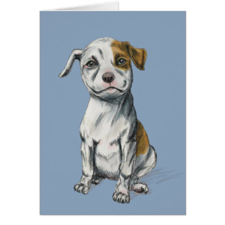 Sitting Pit Bull Puppy Drawing Card
