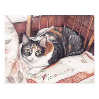Sitting Pretty Calico Cat Art Postcard