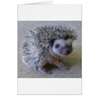 Sitting pretty hedgehog card