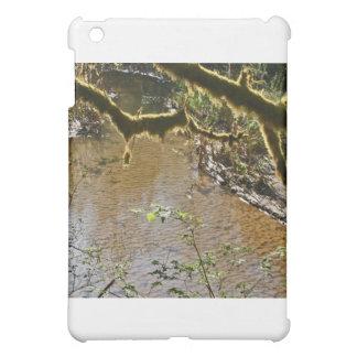Siuslaw River Cover For The iPad Mini