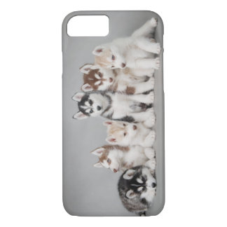 Six huskies iPhone 7 case