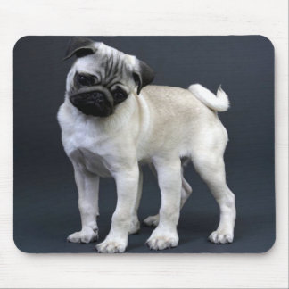 Six Legged Pug Mouse Pad
