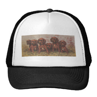 Six Puppies in Straw Mesh Hats