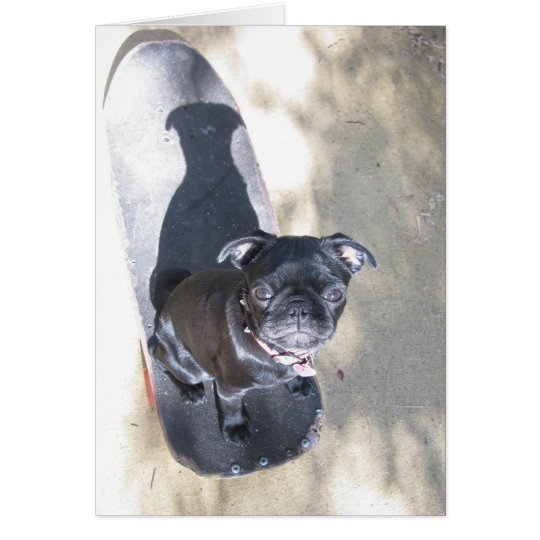 Skateboarding Pug Card (Photo)