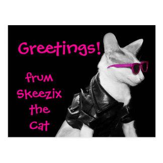 Skeezix the Cat Postcard